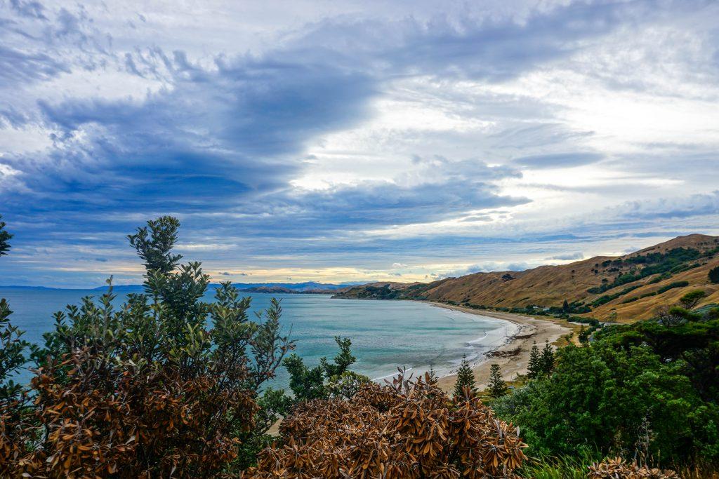 Mittelmässige Landschaft in Neuseeland :-p